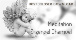 TierTalk Meditation Erzengel Chamuel