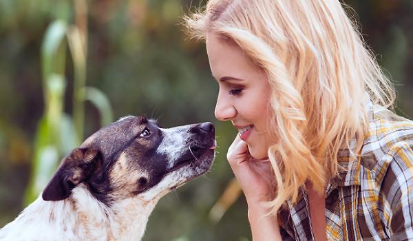 VorOrt Ausbildung Tierkommunikation