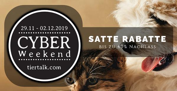 Cyber Weekend vom 29.11 bis 02.12.2019