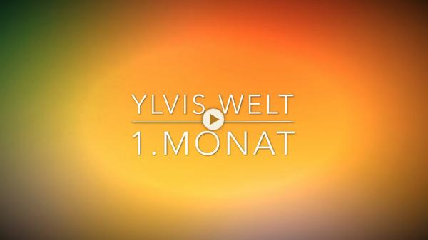 Ylvis Welt