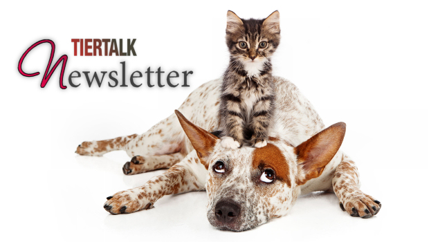 TierTalk Newsletter