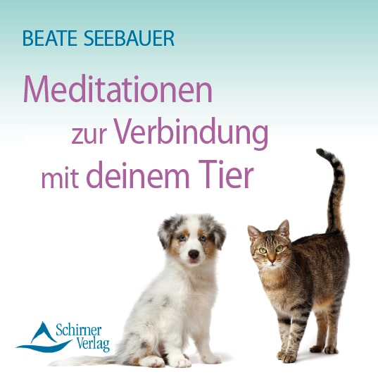 meditationen zur verbindung mit deinem Tier