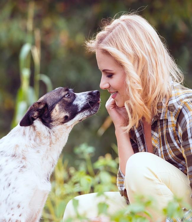 Ausbildung Tierkommunikation