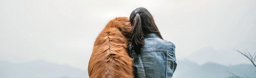 VorOrt Basisseminar Tierkommunikation
