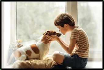 Tiere wünschen sich Präsenz