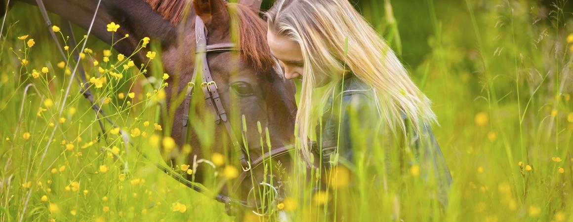 Wertvolle Tierkommunikation - Mensch und Tier Coaching