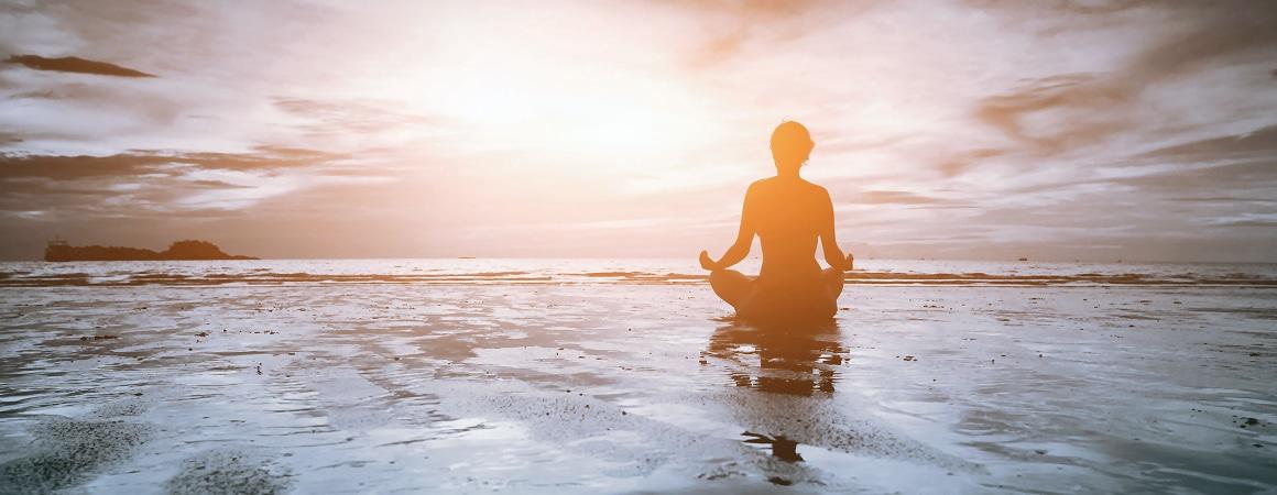 Tierkommunikation und Meditation - Für eine gute Kommunikation erforderlich?