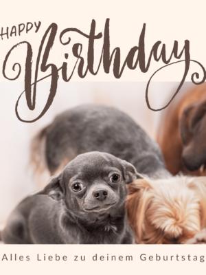 Geburtstag 07
